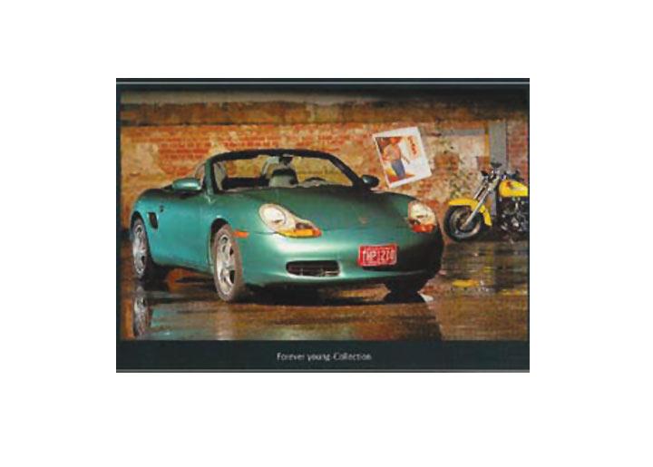 Porsche Boxster Poster (green)